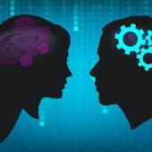 Различия между мужским и женским мозгом