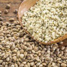 Семена конопли
