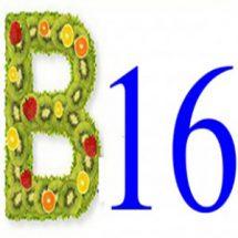 Витамин B16