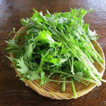 Японская капуста (мизуна)